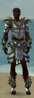 Paragon Primeval Armor M gray front.jpg