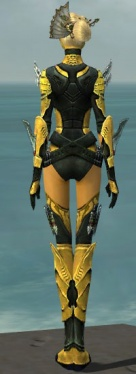 Assassin Imperial Armor F dyed back.jpg