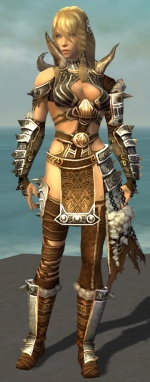 Jora Armor Brotherhood Front.jpg