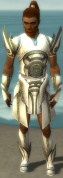 Paragon Asuran Armor M gray front.jpg