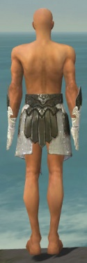 Paragon Elonian Armor M gray arms legs back.jpg