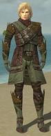 Ranger Elite Druid Armor M gray front.jpg