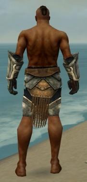 Warrior Sunspear Armor M gray arms legs back.jpg