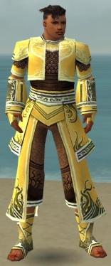 Monk Deldrimor Armor M dyed front.jpg