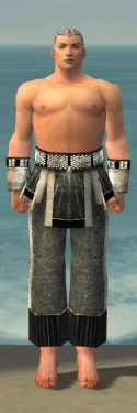 Monk Elite Sunspear Armor M gray arms legs front.jpg