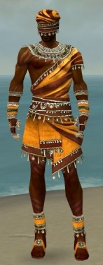 Ritualist Exotic Armor M dyed front.jpg