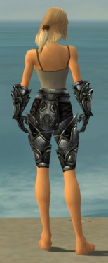 Warrior Obsidian Armor F gray arms legs back.jpg