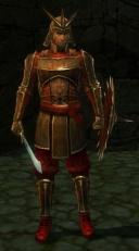 Guardsman Zui.jpg