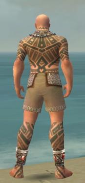 Monk Labyrinthine Armor M gray chest feet back.jpg