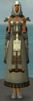 Dervish Elonian Armor F gray front.jpg