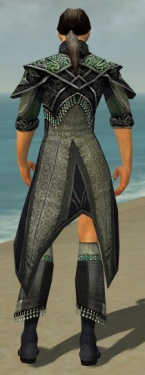 Elementalist Elite Luxon Armor M gray chest feet back.jpg