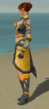 Elementalist Elite Stoneforged Armor F dyed side.jpg