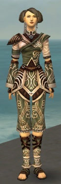 Monk Canthan Armor F gray front.jpg