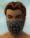 Ranger Elite Canthan Armor M gray head front.jpg