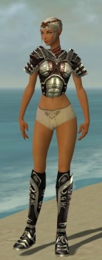 Warrior Ancient Armor F gray chest feet front.jpg