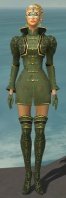 Mesmer Canthan Armor F gray front.jpg