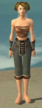 Monk Elite Judge Armor F gray arms legs front.jpg