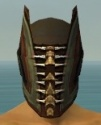 Ritualist Monument Armor M gray head front.jpg