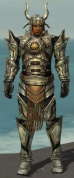 Warrior Elite Sunspear Armor M gray front.jpg