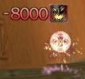 -8000.JPG