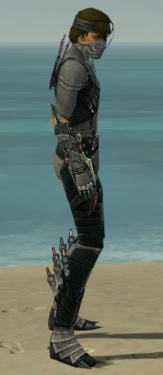 Assassin Elite Canthan Armor M gray side.jpg