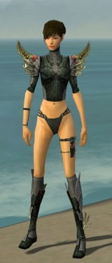 Assassin Elite Imperial Armor F gray chest feet front.jpg