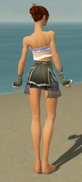 Elementalist Shing Jea Armor F gray arms legs back.jpg