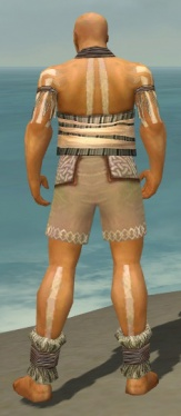 Monk Istani Armor M gray chest feet back.jpg