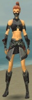 Assassin Elite Canthan Armor F gray front.jpg