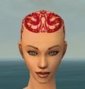 Monk Dragon Armor F dyed head front.jpg