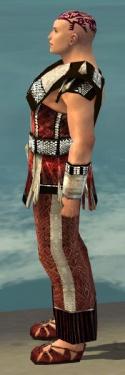 Monk Elite Sunspear Armor M dyed side.jpg