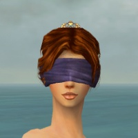 Blindfold F gray front.jpg