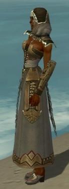 Dervish Asuran Armor F gray side.jpg