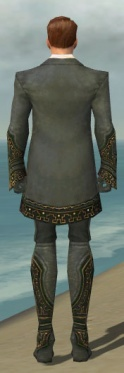 Mesmer Krytan Armor M gray back.jpg