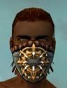 Ranger Elite Sunspear Armor M dyed head front.jpg