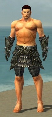 Warrior Wyvern Armor M gray arms legs front.jpg