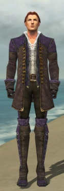 Mesmer Tyrian Armor M dyed front.jpg