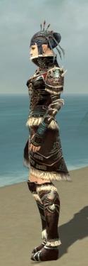 Necromancer Norn Armor F gray side.jpg