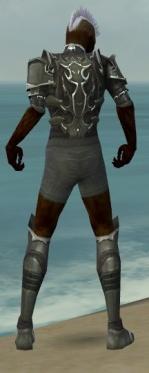 Necromancer Tyrian Armor M gray chest feet back.jpg