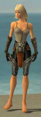 Warrior Elite Canthan Armor F gray arms legs front.jpg