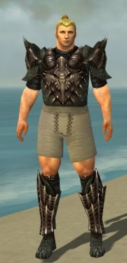 Warrior Elite Dragon Armor M gray chest feet front.jpg