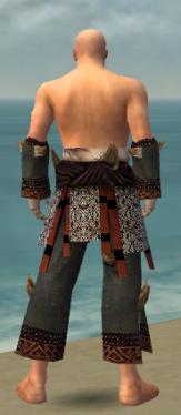 Monk Primeval Armor M gray arms legs back.jpg