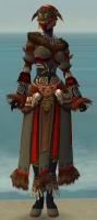 Ritualist Norn Armor F gray front.jpg