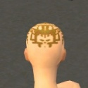 Monk Elite Sunspear Armor F dyed head back.jpg