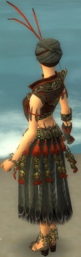 Ritualist Asuran Armor F gray back.jpg