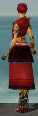 Ritualist Seitung Armor F dyed back.jpg