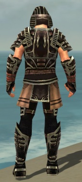 Warrior Ancient Armor M gray back.jpg
