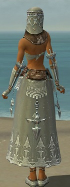 Dervish Vabbian Armor F gray back.jpg