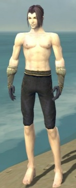 Elementalist Norn Armor M gray arms legs front.jpg