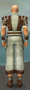 Monk Censor Armor M gray back.jpg
